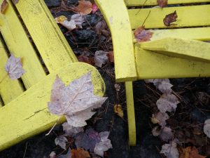 Photo of a yellow Muskoka chair with autumn leaves